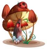 A mushroom with a ladybug Stock Photos