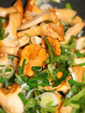 Mushroom and leek stirfry Royalty Free Stock Photos