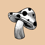 Mushroom. This is line art, Created form my hand drawn royalty free illustration