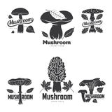 Mushroom logo templates. For your design. Autumn, fallen leaves of trees, dry grass. Mushroom badges, labels, brochures, business templates. Vector illustration stock illustration