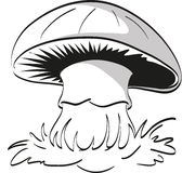 Mushroom. Royalty Free Stock Photos