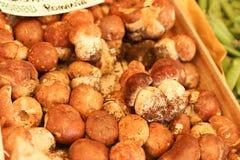 Mushroom market Royalty Free Stock Image