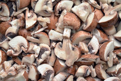 Mushroom meal cut Royalty Free Stock Images