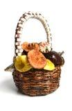 Mushroom2 Stock Image