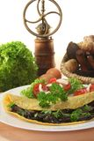 Mushroom omelet. An omelet stuffed with wild mushrooms and fresh salad stock image