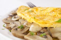 Mushroom Omelet on White royalty free stock photo