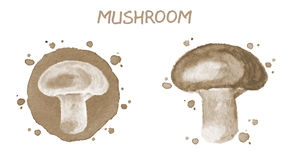 Mushroom. Original watercolor illustration Stock Images