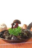 Mushroom pan Royalty Free Stock Photo