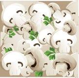 Mushroom pattern Stock Photography