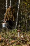 Mushroom picker, who missed boletus Stock Photos