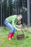 Mushroom picking Royalty Free Stock Photo