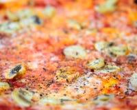 Mushroom pizza Stock Image
