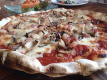 Mushroom pizza Stock Photography