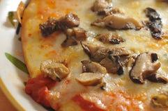 Mushroom pizza Royalty Free Stock Photography