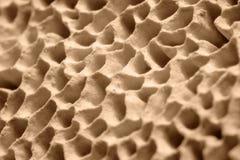 Mushroom pores. Full frame macro shot of some mushroom pores Royalty Free Stock Images