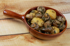 Mushroom and Potato Stew Stock Photos