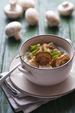 Mushroom pottage Royalty Free Stock Images