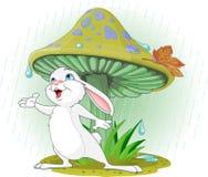 Mushroom Rabbit. Cute rabbit wearing rain gear under  mushroom Royalty Free Stock Image