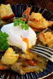 Mushroom ragout with poshed  egg Royalty Free Stock Photo