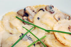 Mushroom ravioli with cream sauce Royalty Free Stock Images