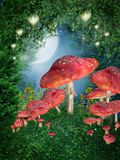 Mushroom ring. Fairytale forest with a mushroom ring and lanterns Royalty Free Stock Photo
