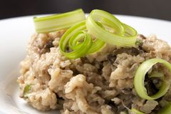 Mushroom risotto. And celery garnish Royalty Free Stock Photos