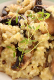 Mushroom Risotto Royalty Free Stock Photography