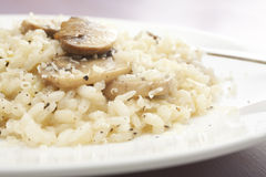 Mushroom Risotto. Creamy mushroom risotto sprinkled with black pepper and parmesan Royalty Free Stock Photos