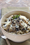 Mushroom Risotto. Bowl of mushroom risotto, garnished with thyme and parmesan Royalty Free Stock Image