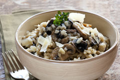 Mushroom Risotto. Bowl of mushroom risotto, garnished with thyme and parmesan Royalty Free Stock Photo
