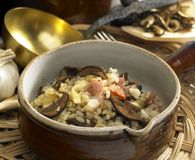 Mushroom rissoto Stock Images