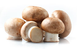 Mushroom. royal champignons on a white background Stock Image