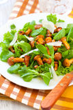 Mushroom salad Royalty Free Stock Image