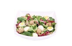 Mushroom salad with pine nuts and radicchio. Royalty Free Stock Image