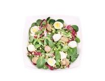 Mushroom salad with pine nuts and radicchio. Stock Photo