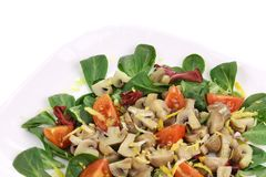 Mushroom salad with tomatoes. Royalty Free Stock Photography