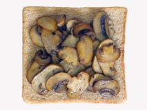 Mushroom sandwich Royalty Free Stock Images