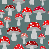 Mushroom seamless pattern. Vector background of fly agaric. Vint Stock Photo