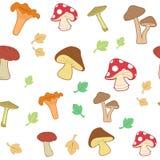 Mushroom seamless pattern, vector illustration vector illustration