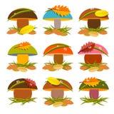 Mushroom Set Illustration Royalty Free Stock Image