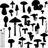 Mushroom silhouettes Stock Photography
