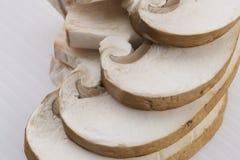 Mushroom. Sliced mushroom on white background - macro Stock Images