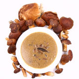 Mushroom soup Royalty Free Stock Photos
