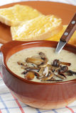 Mushroom soup Royalty Free Stock Photo