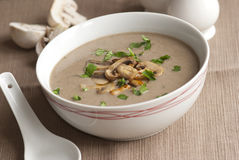 Mushroom soup. Freshly made mushroom soup in a bowl Stock Photos