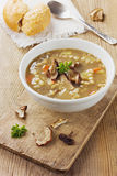 Mushroom soup with barley and vegetables Royalty Free Stock Photos