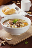 Mushroom soup with barley and vegetables Stock Images
