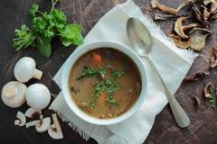 Mushroom soup Stock Images