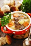 Homemade mushroom soup Royalty Free Stock Images