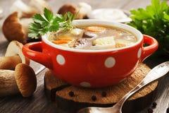 Homemade mushroom soup Stock Image